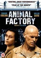 Állati kiképzés (2000)