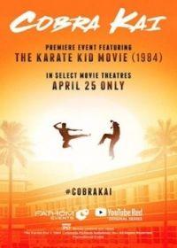 Cobra Kai 1. évad (2018)