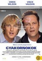 Gyakornokok (2013)