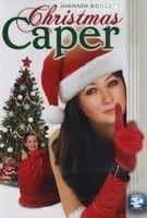Karácsonyi csínytevő (2007)