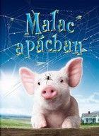 Malac a pácban (2006)